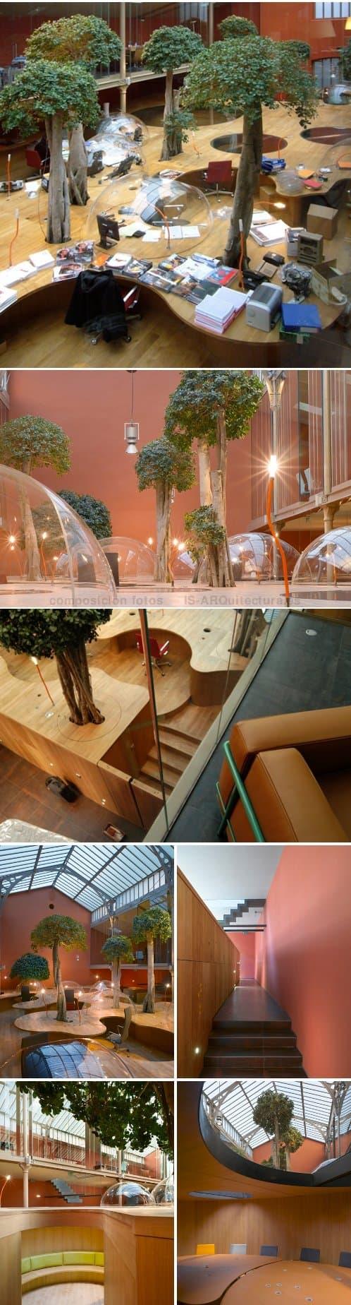 modernas-oficinas-pons_huot con gran estructura de madera maciza