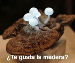 Tag_madera