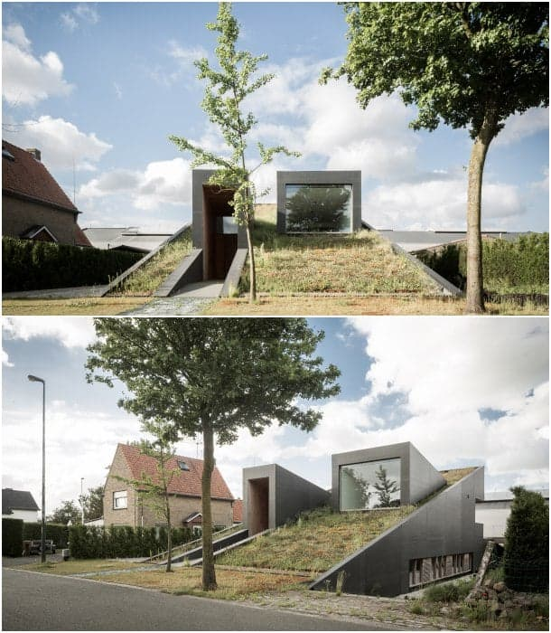 pibo-house-casa-cubierta-verde