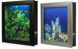 Aquavista: acuario para decorar paredes