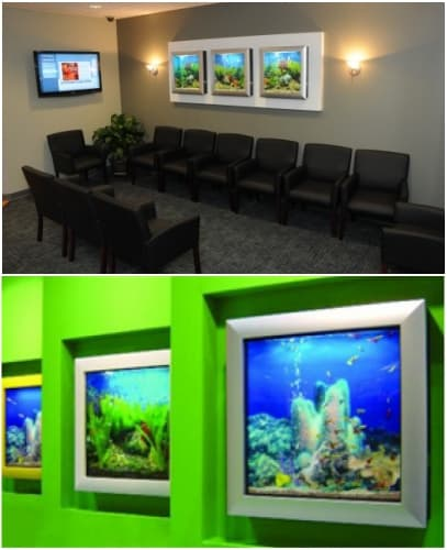 paredes decoradas con acuario Aquavista