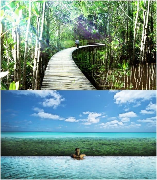 camino elevado residencial Riviera Maya